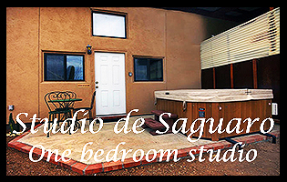 Studio de Saguaro Logo-Button-Black Frame